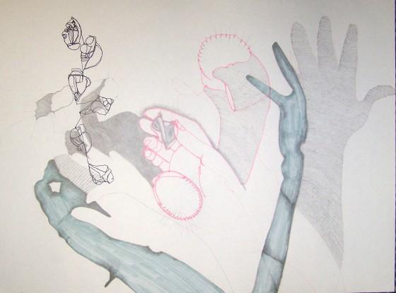Contour Line Drawing Art : Contour line drawing u2013 curious developments of erin cross